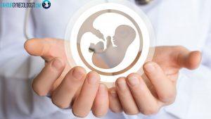 فریز کردن تخمک چگونه است و چه عوارضی دارد ؟